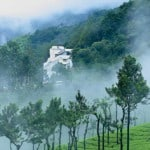 Misty Mountain Resort, Munnar , Kerala, India